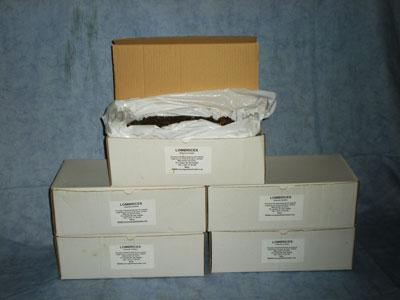 Cajas-pequeñas-de-lombrices