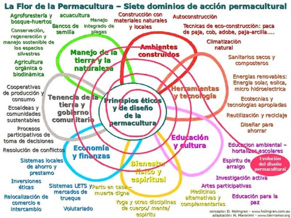 La flor de la permacultura